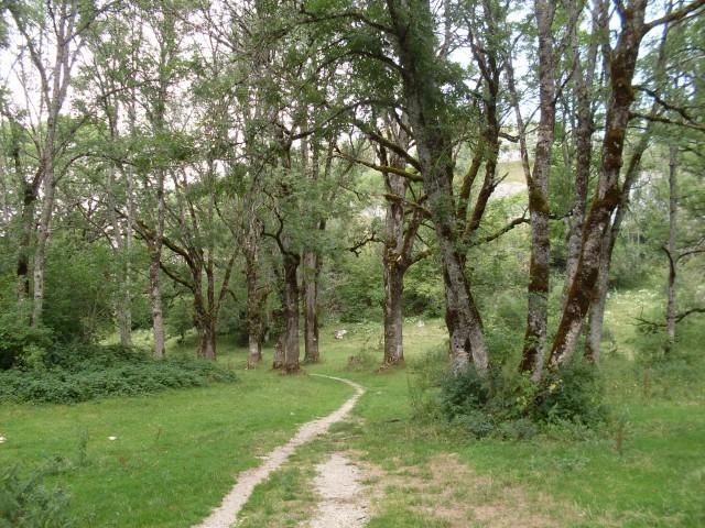 pontarlier - roche sarrasine (6)